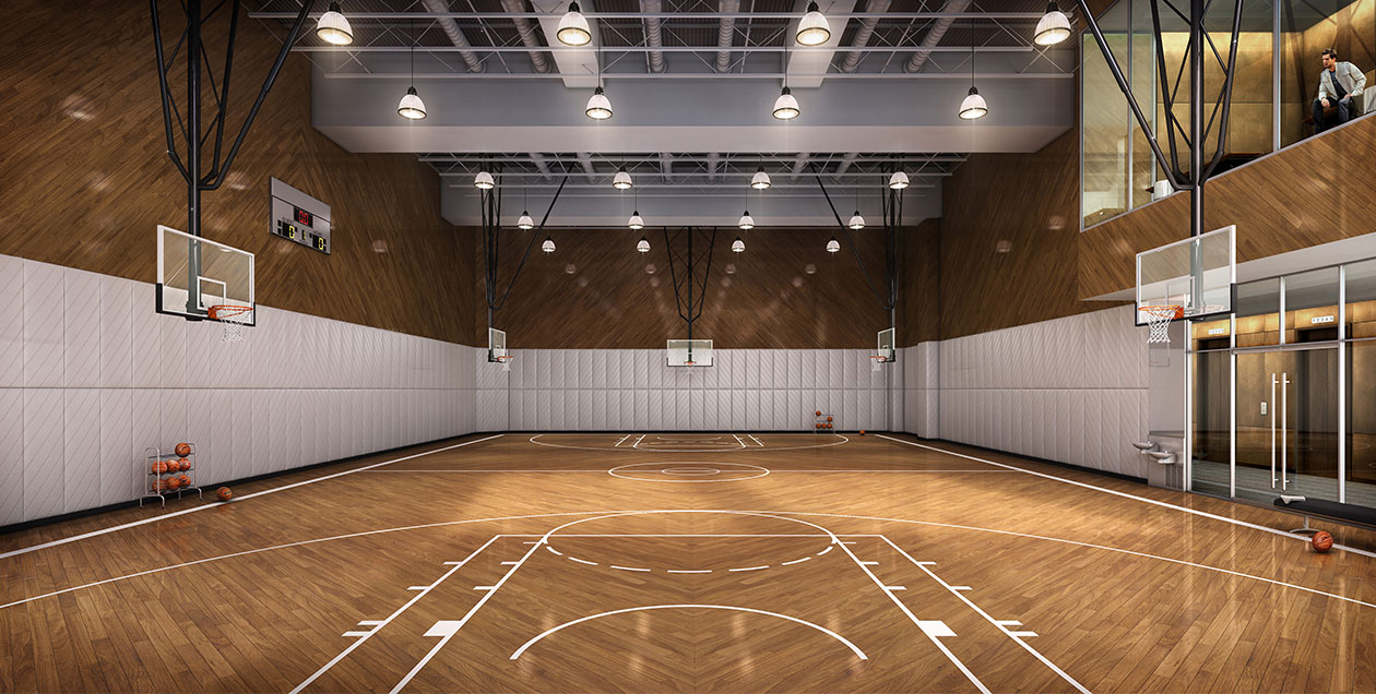 Lifetime fitness basketball hoop blog dandk for Building a basketball gym